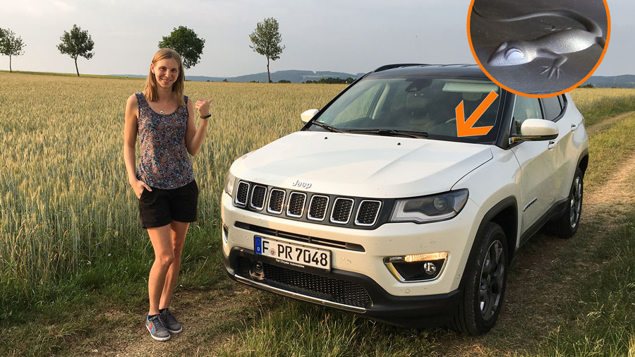 jeep compass easter eggs mysteri se codes motoreport. Black Bedroom Furniture Sets. Home Design Ideas